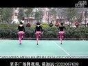 2013最新广场舞《火火姑娘》舞蹈视频