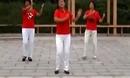 中老年广场舞《伤不起》32步(慢三)