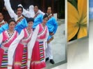 遂昌牡丹亭广场舞《扎西德勒》藏文舞蹈
