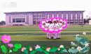 刘丽新广场舞《荷塘月色》中老年健身团表演
