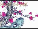 少儿钱柜娱乐官方网站下载,钱柜娱乐,钱柜国际娱乐,钱柜娱乐国际官方网站 我是女生 凤凰香香儿童舞蹈演示