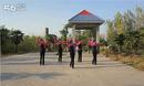 鲁山鹤馨广场舞《梦中的蝴蝶》背面分解动作教学