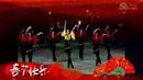 禹城辛寨广场舞《醉月亮》