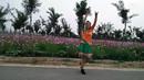 北京紫梦广场舞、歌在飞