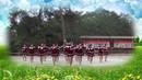 信丰县金鸡村广场舞《兵哥哥》