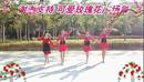 可爱玫瑰花广场舞 双人对跳恰恰舞