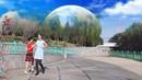 上海月亮广场舞《老婆最大》双人舞