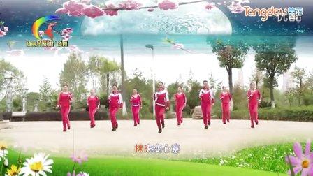 杨丽萍原创广场舞《爱情骗子我问你》步伐舞