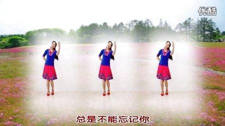 金灿灿广场舞《粉红色的回忆》附背面教学演示