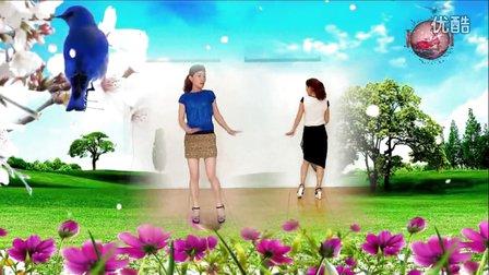 玫香广场舞《粉红色的回忆》双人对跳 编舞 阿采