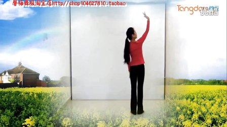 馨梅广场舞《爱人的翅膀》附教学版 制作:泉水叮咚