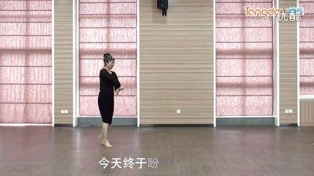 李琦广场舞 绣红旗 正面背面动作分解  编舞:蔡瑞景