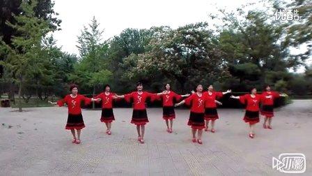 北京花开四季广场舞 北京的金山上
