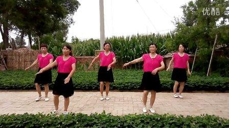台安县新开河镇小高力房村广场舞《套马杆》