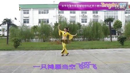 江南雨广场舞 歌在飞