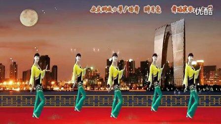 安庆桐城小翠广场舞《醉月亮》高清传奇