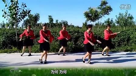 河北阜城刘辛广场舞 哑巴新娘16步