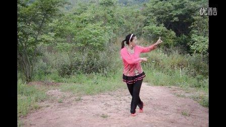 2016年陈二妹广场舞《泉水叮咚响》