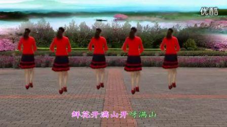 八步广场舞 南泥湾 舞姿非常优美