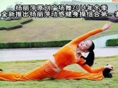 杨丽萍广场舞 动感有氧健身操组合六