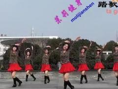 茉莉广场舞 快乐广场 正反面口令教学
