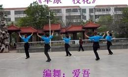 绣舞动广场舞 草原一枝花 编舞:爱吾 演示:绣舞动舞蹈队