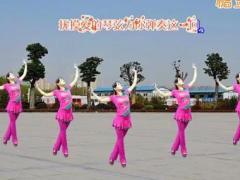 益馨广场舞《歌在飞》步子舞32步 含背面分解教学
