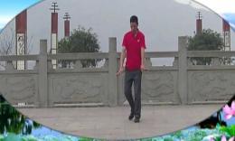 凤凰六哥广场舞 《快乐广场》 正背面编舞六哥