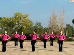 潘阳春英广场舞《快乐广场》