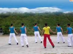 舞动旋律2007广场舞 旋转恰恰 30步