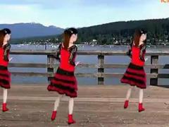 惠汝广场舞《歌在飞》