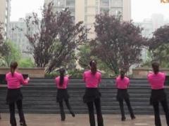 茉莉广场舞 《套马杆》 含背面口令教学