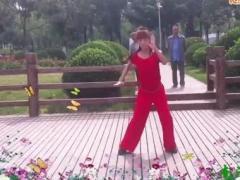 林大静广场舞《我就是大哥》编舞杨丽萍、演示林大静