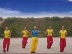 舞动旋律2007广场舞《我的祖国》32步