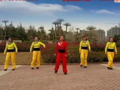 舞动旋律2007广场舞《踏浪》原创