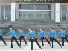 紫蝶广场舞 《为你等待》 踏歌广场舞