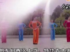 杨丽萍原创广场舞 动感有氧健身操 组合二