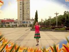 高安子君广场舞《草原一枝花》背面分解