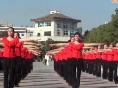 茉莉广场舞 佳木斯快乐舞步 第五套 比赛表演