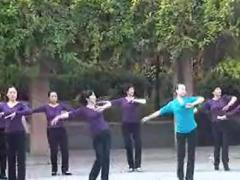 格格广场舞 《南泥湾》 零陵南电花园广场舞