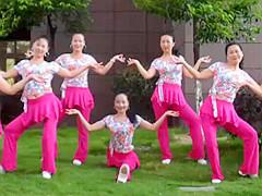 杨丽萍原创广场舞《做你的雪莲》形体拉伸操 含背面动作分解教学