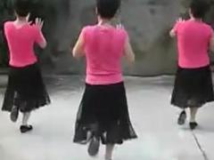 中老年广场舞《套马杆》16步演示