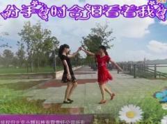 江南雨广场舞 红尘情歌 双人舞