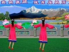 龙游红飞舞广场舞 雪山姑娘