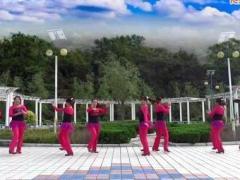 蝶依广场舞 双人对跳 一曲红尘 附教学