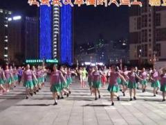 重庆叶子广场舞 《北京的金山上》 含背面分解教学