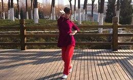 林大静广场舞《没钱你会爱我吗》有氧动感健身操