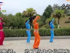 杨丽萍广场舞 动感有氧健身操 组合三