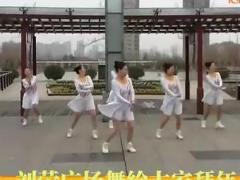 刘荣广场舞 《飞歌醉情怀》