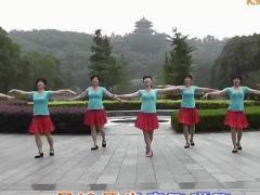 动动广场舞 歌在飞 含背面动作示范